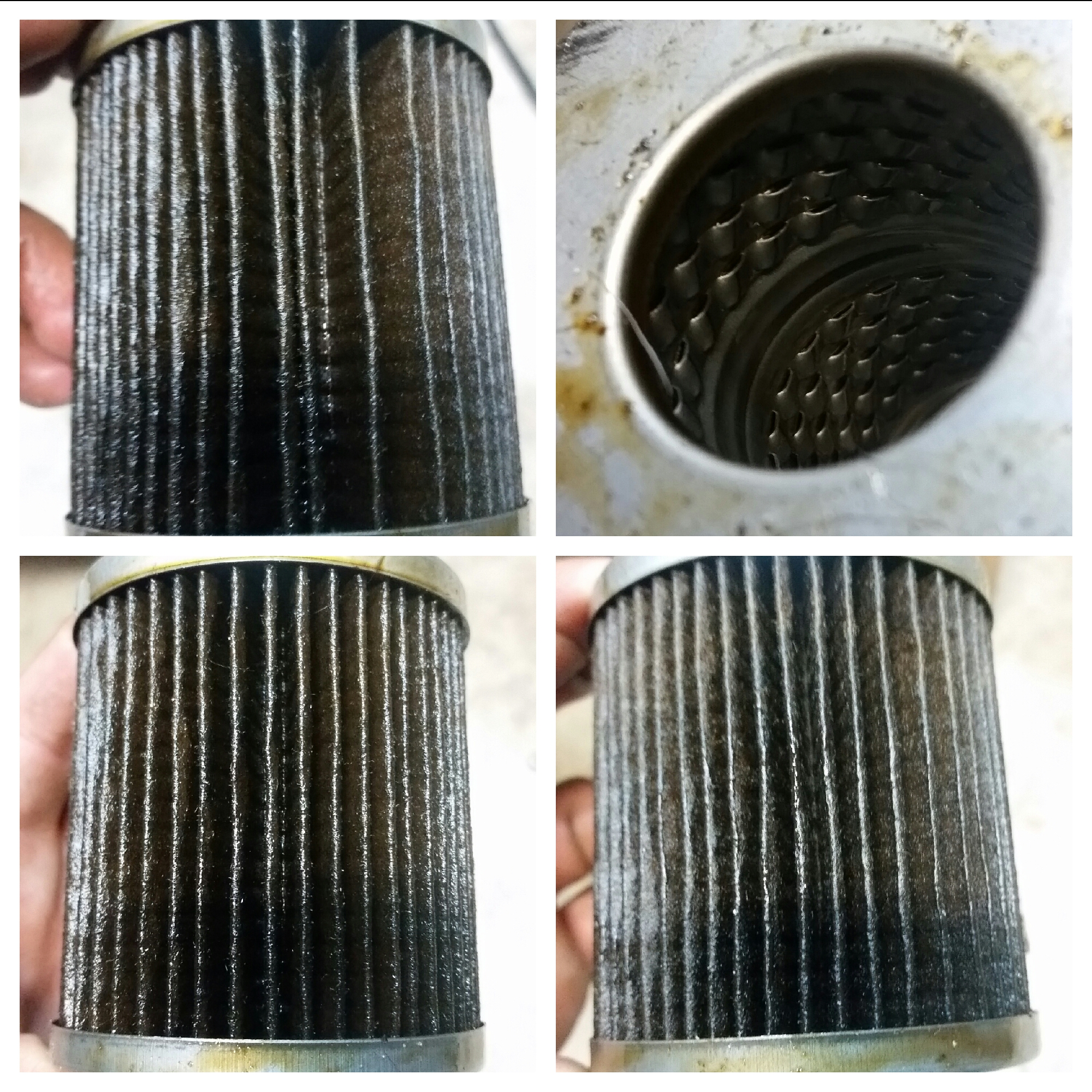 Federated Lf641f Engine Oil Filters Bob Is The